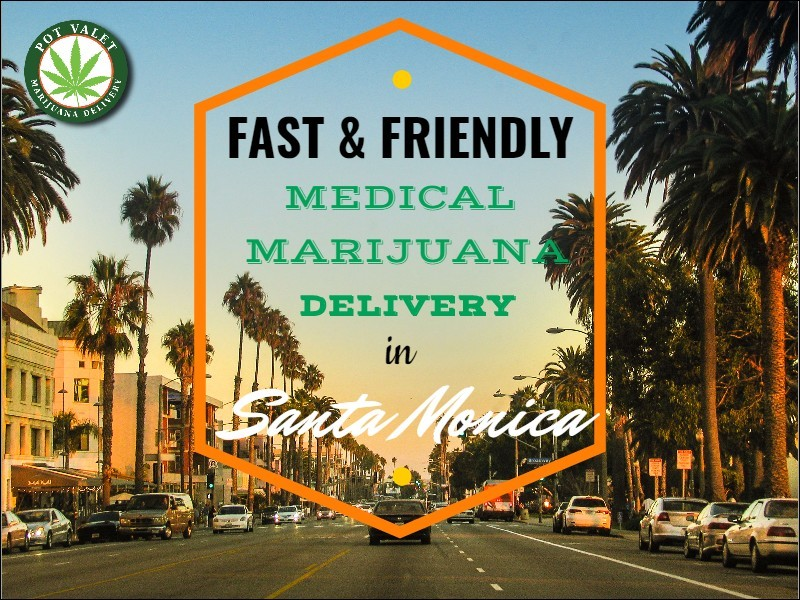 Avail Fast and Friendly Medical Marijuana Delivery in Santa Monica