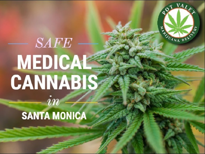 <span>Santa Monica is Home to Great Medical Marijuana Delivery Services but Stay Safe</span>