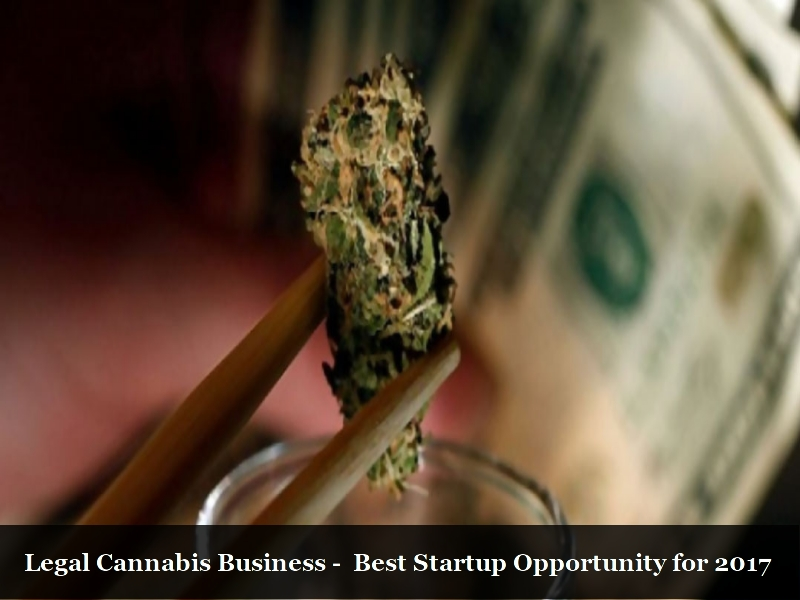 Legal cannabis business 2017