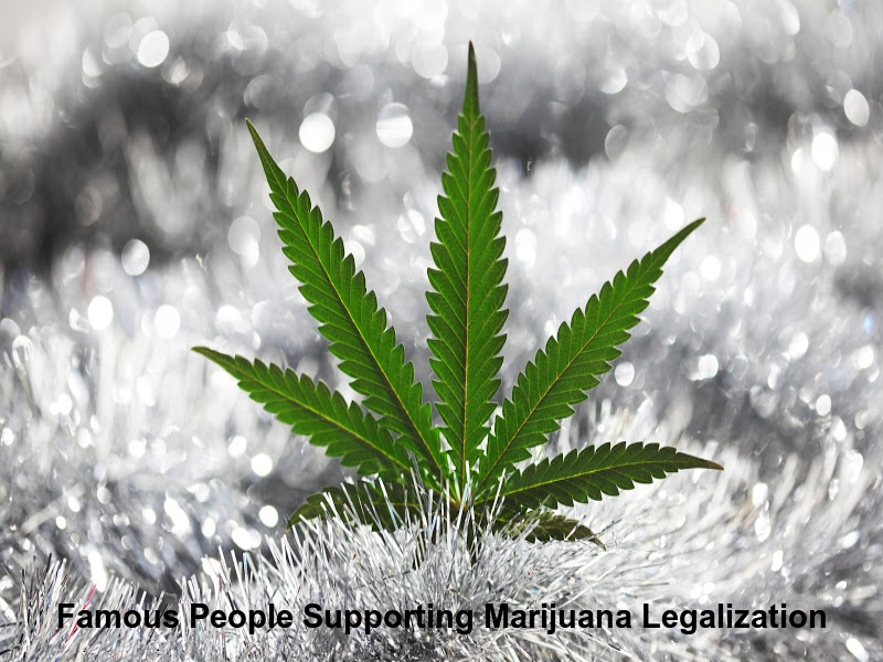 Famous People Supporting Marijuana Legalization