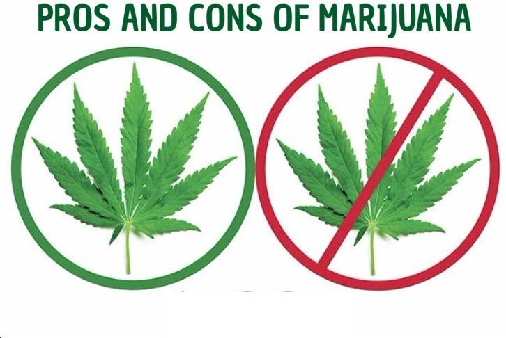 disadvantages of marijuana The active ingredient in marijuana acts in the part of the brain called the   there are advantages and disadvantages to taking it it should.