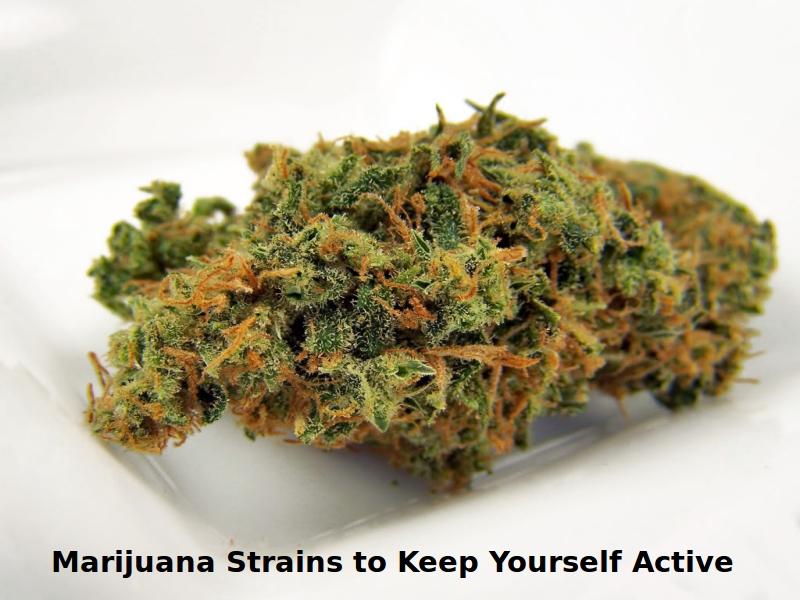 Marijuana Strains to Keep Yourself Active