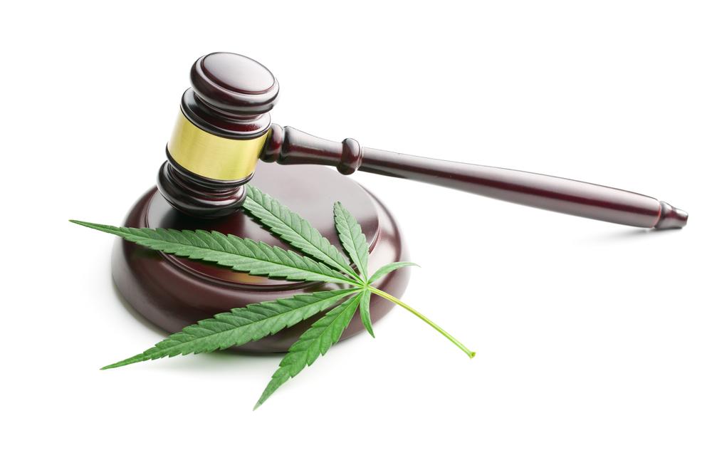 Marijuana Business Archives - Santa Monica Marijuana Delivery
